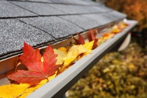 Gutter Cleaning Clayton NC